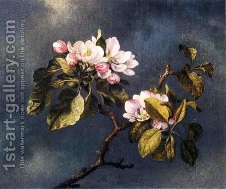 Apple Blossoms 2 by Martin Johnson Heade - Reproduction Oil Painting