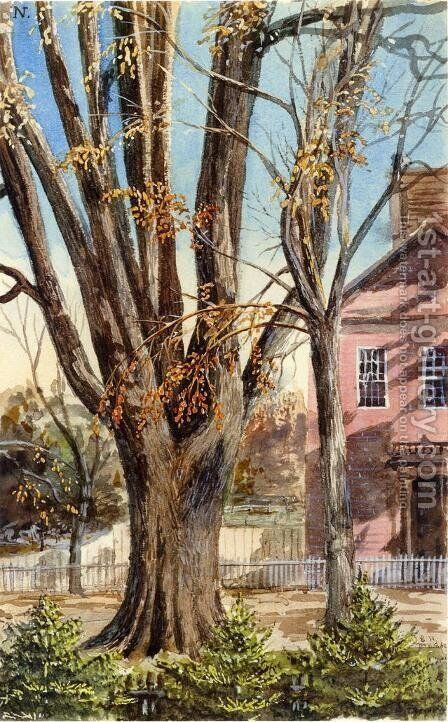 Elm, East Hartford, Connecticut by Charles DeWolf Brownell - Reproduction Oil Painting