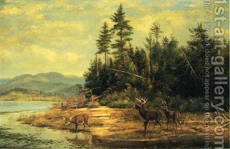 View on Long Lake by Arthur Fitzwilliam Tait - Reproduction Oil Painting