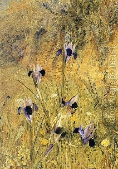 Irises in the Garden by Henry Roderick Newman - Reproduction Oil Painting