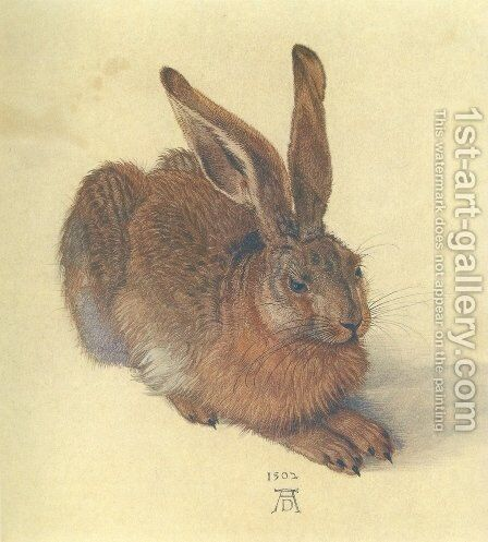 Young Hare I by Albrecht Durer - Reproduction Oil Painting