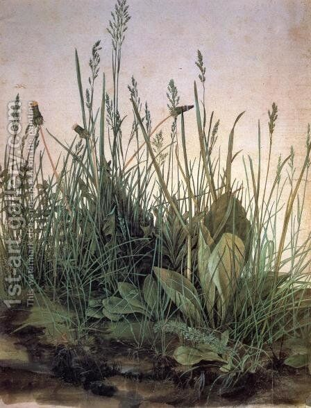 Large Turf by Albrecht Durer - Reproduction Oil Painting