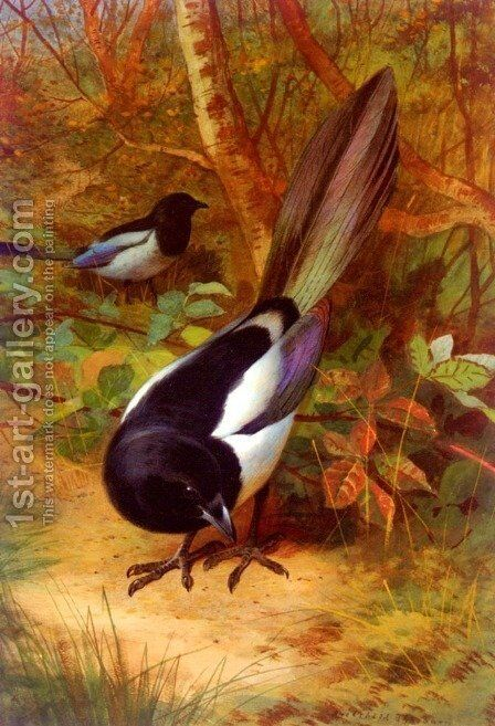 Magpies by Archibald Thorburn - Reproduction Oil Painting