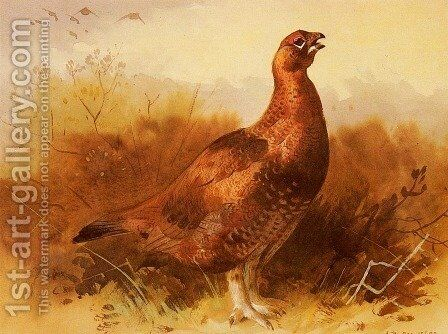 Cock Grouse by Archibald Thorburn - Reproduction Oil Painting