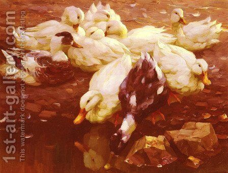 Enten Am Teich (Ducks in the pond) by Alexander Max Koester - Reproduction Oil Painting