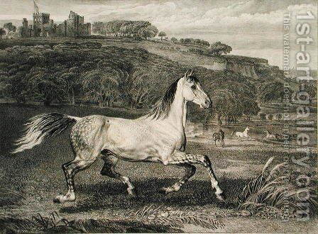 Cossack Horse, from Celebrated Horses, a set of fourteen racing prints published by the artist, 1823-24 by James Ward - Reproduction Oil Painting