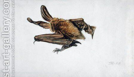A Bat by James Ward - Reproduction Oil Painting