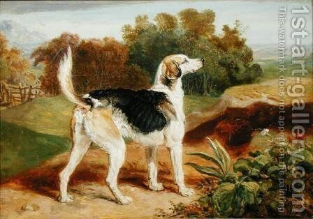 Ravager, one of the Lambton Hounds by James Ward - Reproduction Oil Painting