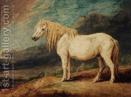 Shetland Pony by James Ward - Reproduction Oil Painting