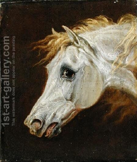 Head of a Grey Arabian Horse by Martin Theodore Ward - Reproduction Oil Painting
