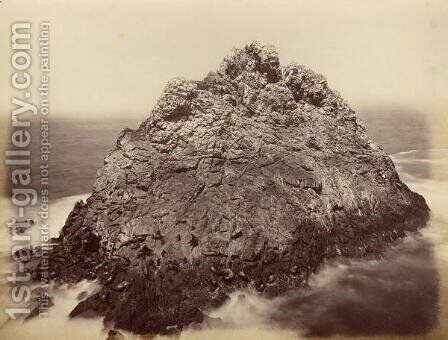 Sugar Loaf Island, Farallon National Wildlife Refuge, California, USA, 1869 by Carleton Emmons Watkins - Reproduction Oil Painting