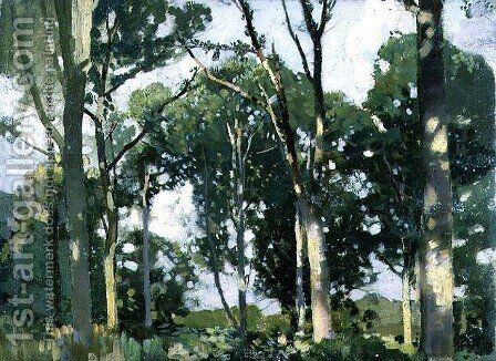 Trees in sunlight by Harry Watson - Reproduction Oil Painting