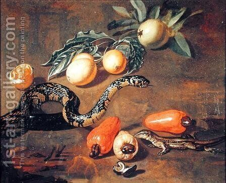 Still Life of Fruits from Surinam and Reptiles by Dirk Valkenburg - Reproduction Oil Painting
