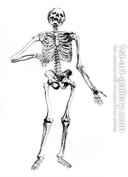 Human Skeleton by Andreas Vesalius - Reproduction Oil Painting