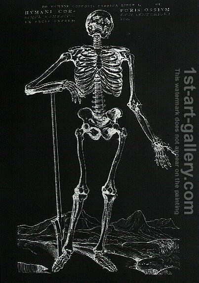 Human Skeleton 2 by Andreas Vesalius - Reproduction Oil Painting
