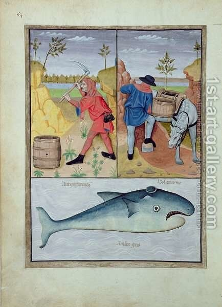 Illustration from the Book of Simple Medicines by Mattheaus Platearius d.c.1161 c.1470 45 by Robinet Testard - Reproduction Oil Painting