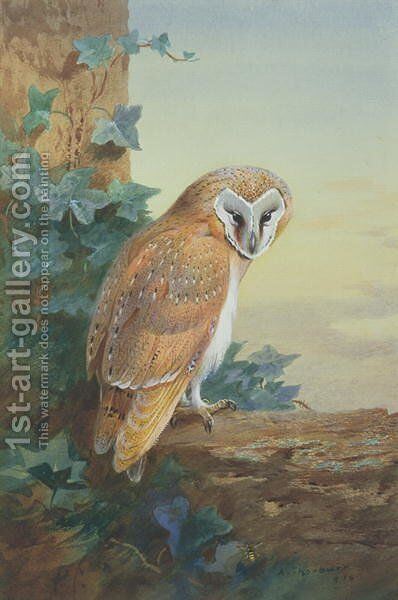 Barn Owl, 1916 by Archibald Thorburn - Reproduction Oil Painting
