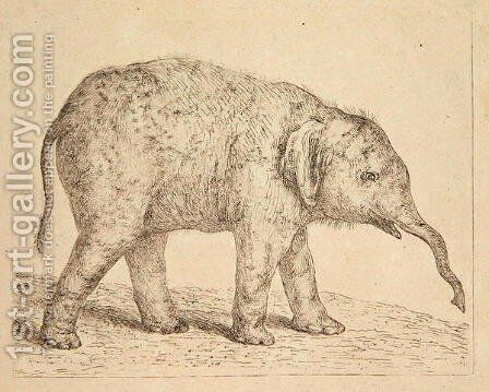 Elephant by Johann Heinrich Wilhelm Tischbein - Reproduction Oil Painting