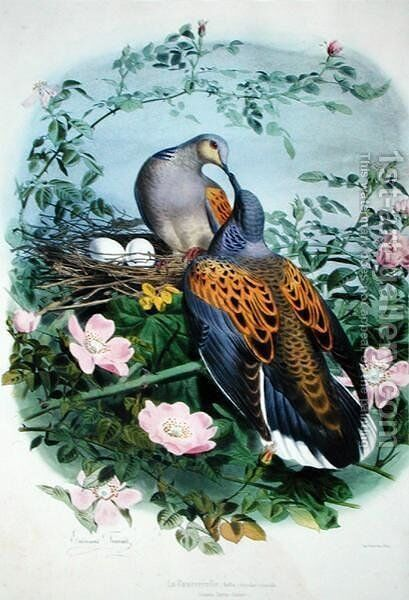 A Pair of Turtle Doves by Edouard Travies - Reproduction Oil Painting