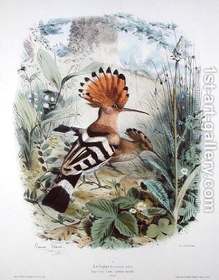 Hoopoe by Edouard Travies - Reproduction Oil Painting