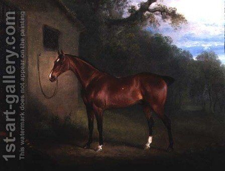 Portrait of a Bay Hunter Tethered to a Stable by Charles Henry Schwanfelder - Reproduction Oil Painting