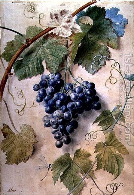 Black Grapes by James Sillett - Reproduction Oil Painting