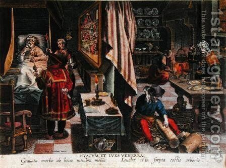 Preparation and Use of Guayaco for Treating Syphilis, engraved by Philip Galle 1537-1612 c.1570 by Jan van der (Joannes Stradanus) Straet - Reproduction Oil Painting