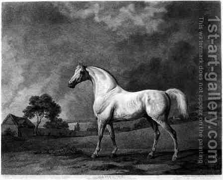 Mambrino, engraved by George Townley Stubbs 1756-1815 pub. 1794 by (after) Stubbs, George - Reproduction Oil Painting