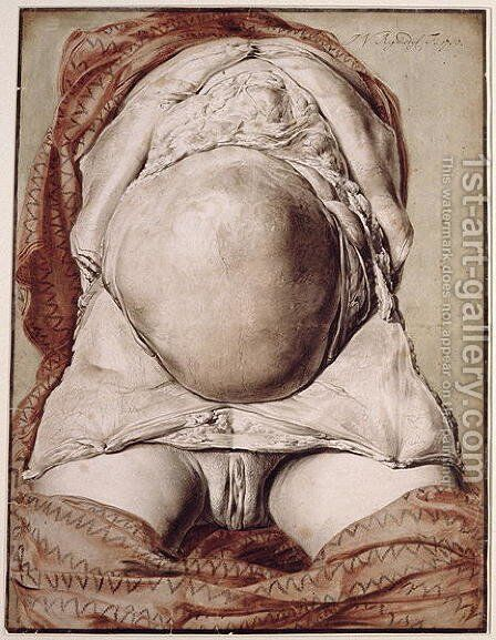 Ms Hunter 658 Plate I Drawing for William Hunters 1718-83 Anatomy of the Human Gravid Uterus, 1774 by Jan van Rymsdyk - Reproduction Oil Painting