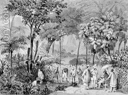 The Chinese Tea Plantation in the Botanic Gardens at Rio de Janeiro, engraved by Leon Jean Baptiste Sabatier fl.1827-87 and Victor Adam 1801-66 c.1835 by Johann Moritz Rugendas - Reproduction Oil Painting
