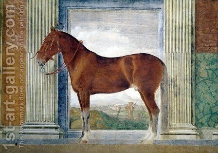Sala dei Cavalli, detail showing a portrait of a chestnut horse from the stables of Ludovico Gonzaga III of Mantua, 1528 by Giulio Romano (Orbetto) - Reproduction Oil Painting