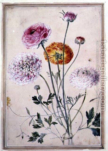 Flower Study, c.1760 by Thomas Robins - Reproduction Oil Painting