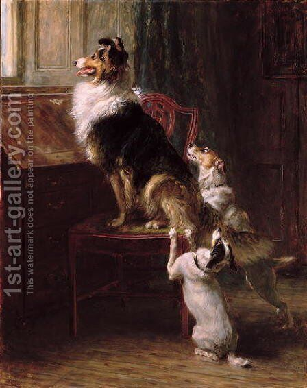 A Reserved Seat, 1901 by Briton Rivière - Reproduction Oil Painting