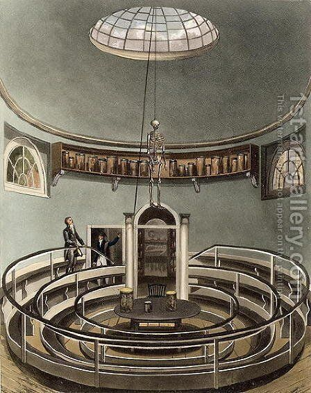 Interior of the Theatre of Anatomy, Cambridge, from The History of Cambridge, engraved by Joseph Constantine Stadler fl.1780-1812, pub. by R. Ackermann, 1815 by (after) Pugin, Augustus Charles - Reproduction Oil Painting