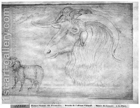 Ram and head of a ram, from the The Vallardi Album by Antonio Pisano (Pisanello) - Reproduction Oil Painting