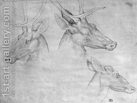 Two heads of stags, one head of a doe, from the The Vallardi Album by Antonio Pisano (Pisanello) - Reproduction Oil Painting