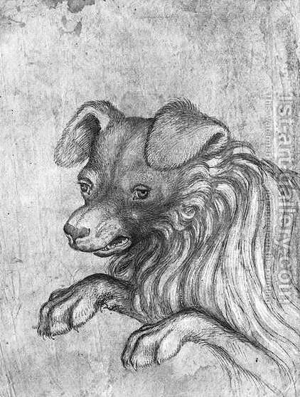 Head of a dog, from the The Vallardi Album by Antonio Pisano (Pisanello) - Reproduction Oil Painting