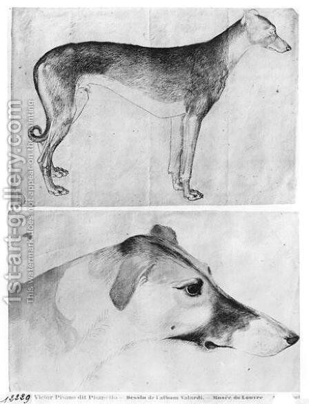 Greyhound and head of a greyhound, from the The Vallardi Album by Antonio Pisano (Pisanello) - Reproduction Oil Painting