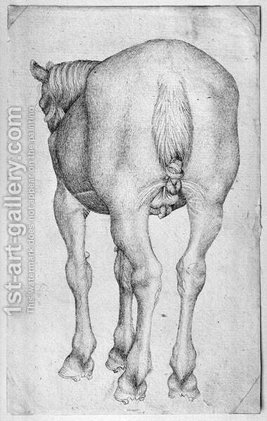 Horse, from the The Vallardi Album by Antonio Pisano (Pisanello) - Reproduction Oil Painting
