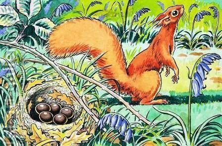 Little Red Squirrel 8 by Harry M. Pettit - Reproduction Oil Painting
