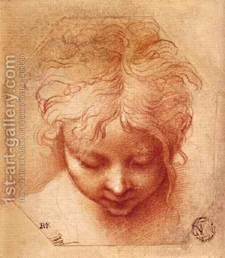 Study of a Head by Girolamo Francesco Maria Mazzola (Parmigianino) - Reproduction Oil Painting