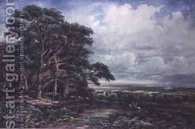 Bradgate Park near Leicester by James Orrock - Reproduction Oil Painting