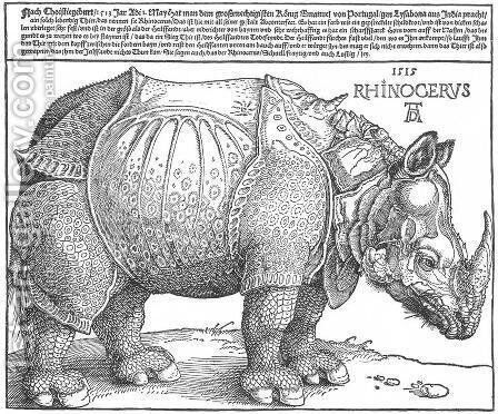 Rhinoceros by Albrecht Durer - Reproduction Oil Painting