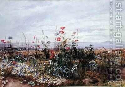 Wildflowers with a View of Dublin Dunleary by Andrew Nicholl - Reproduction Oil Painting