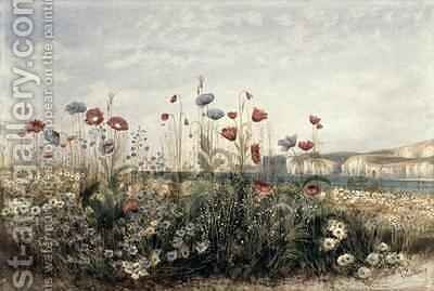 Wild Flowers on the Irish Coast by Andrew Nicholl - Reproduction Oil Painting