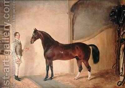 Groom with Hunter on Tredegar Estate Monmouthshire 1851 by James Flewitt Mullock - Reproduction Oil Painting