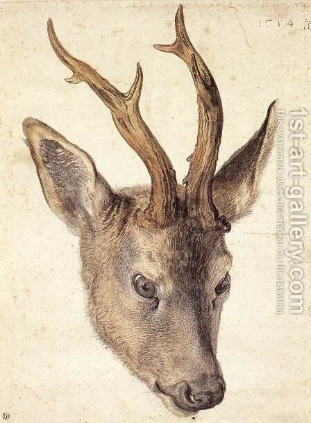 Head of a Stag by Albrecht Durer - Reproduction Oil Painting