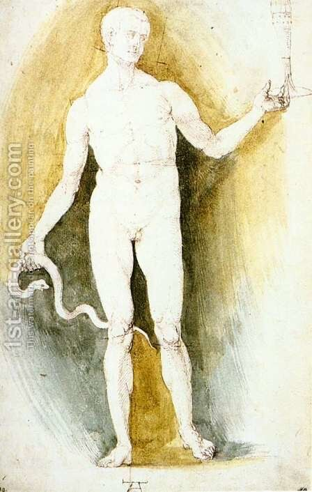 Male Nude with a Glass and Snake, so-called Asclepius by Albrecht Durer - Reproduction Oil Painting