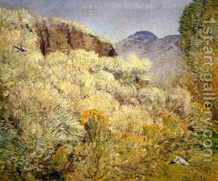 Harney Desert by Childe Hassam - Reproduction Oil Painting