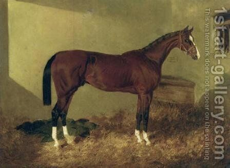 Aristides A Bay Colt 1844 by John Frederick Herring Snr - Reproduction Oil Painting